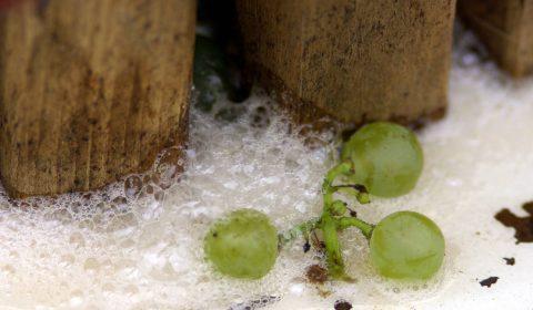 grains de raisin et pressoir en bois