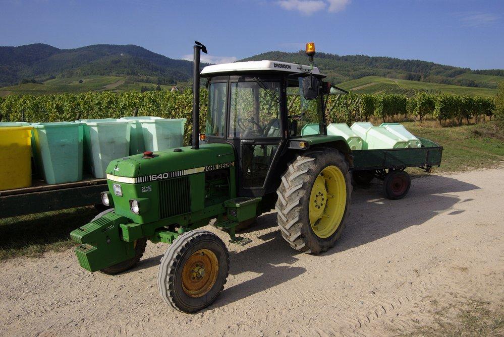tracteur durant les vendanges