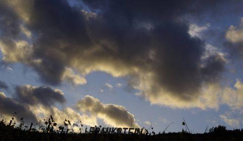 grand cru Frankstein dans les nuages